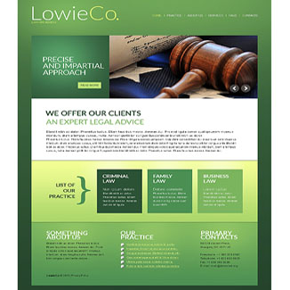 Law Firm or Lawyer Website Design CMS|website design